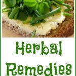 herbal thyroid remedies thyroid gland, herbal remedies and thyroidherbal thyroid remedies