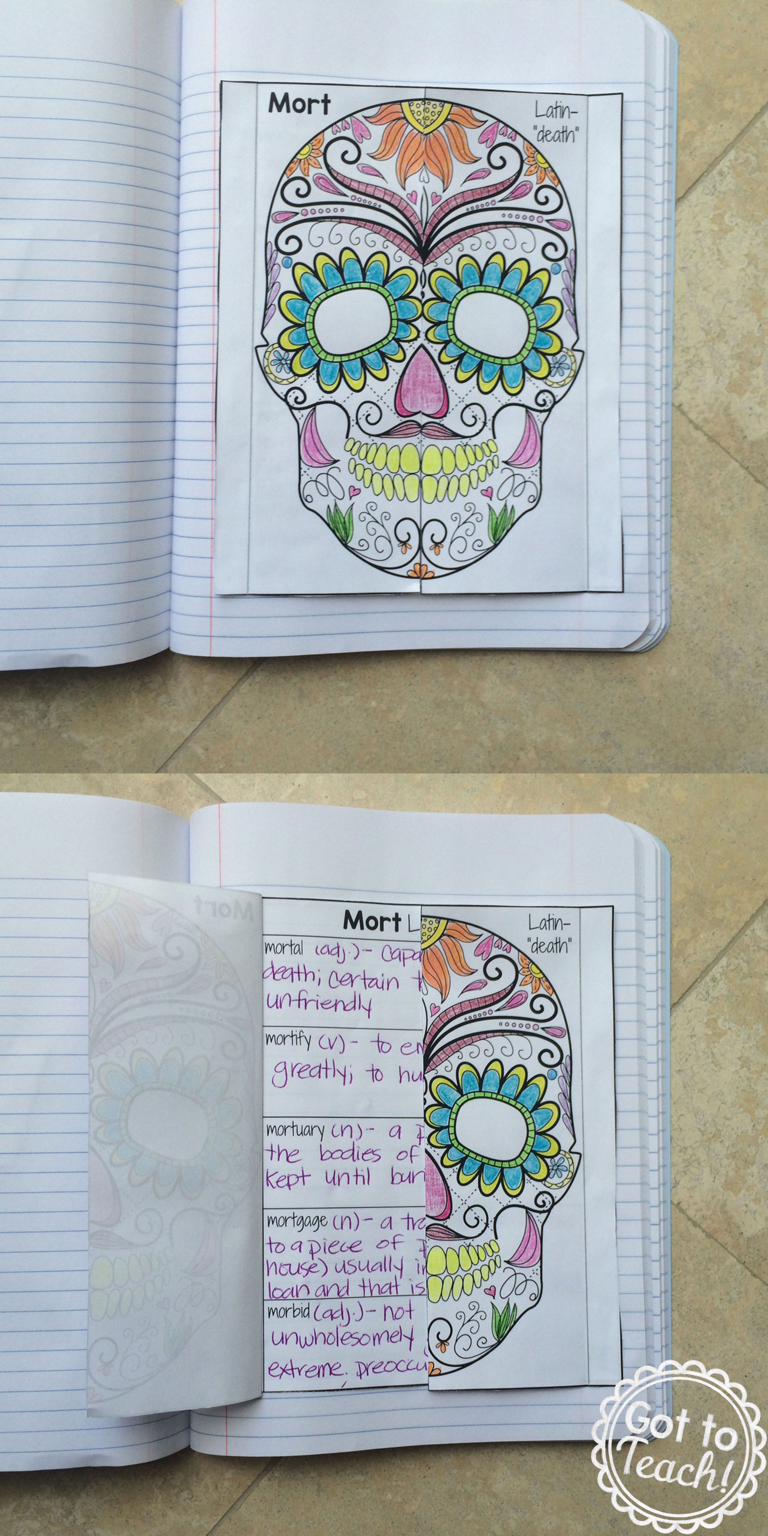 Greek And Latin Roots Interactive Notebook Freebie