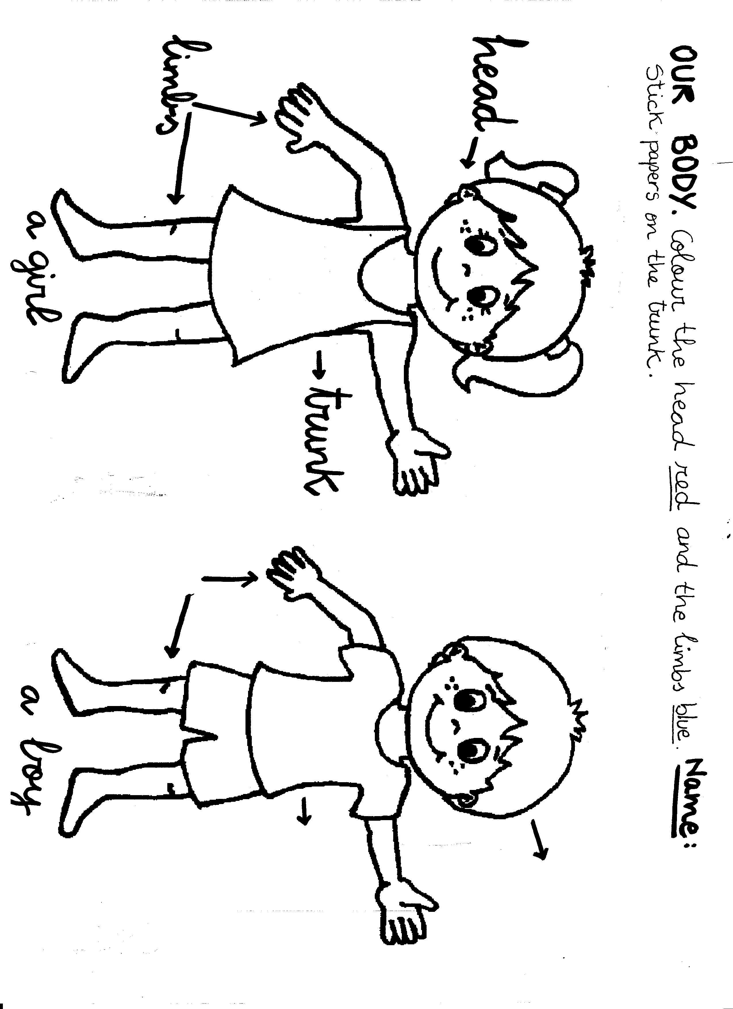 My Body Preschool Color Sheet