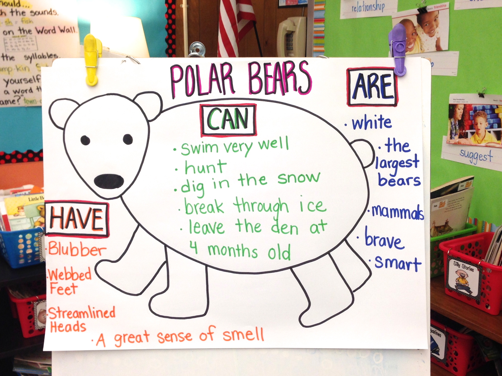 Polar Bear Anchor Chart