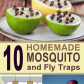 diy mosquito traps whatever pinterest fly traps gardens