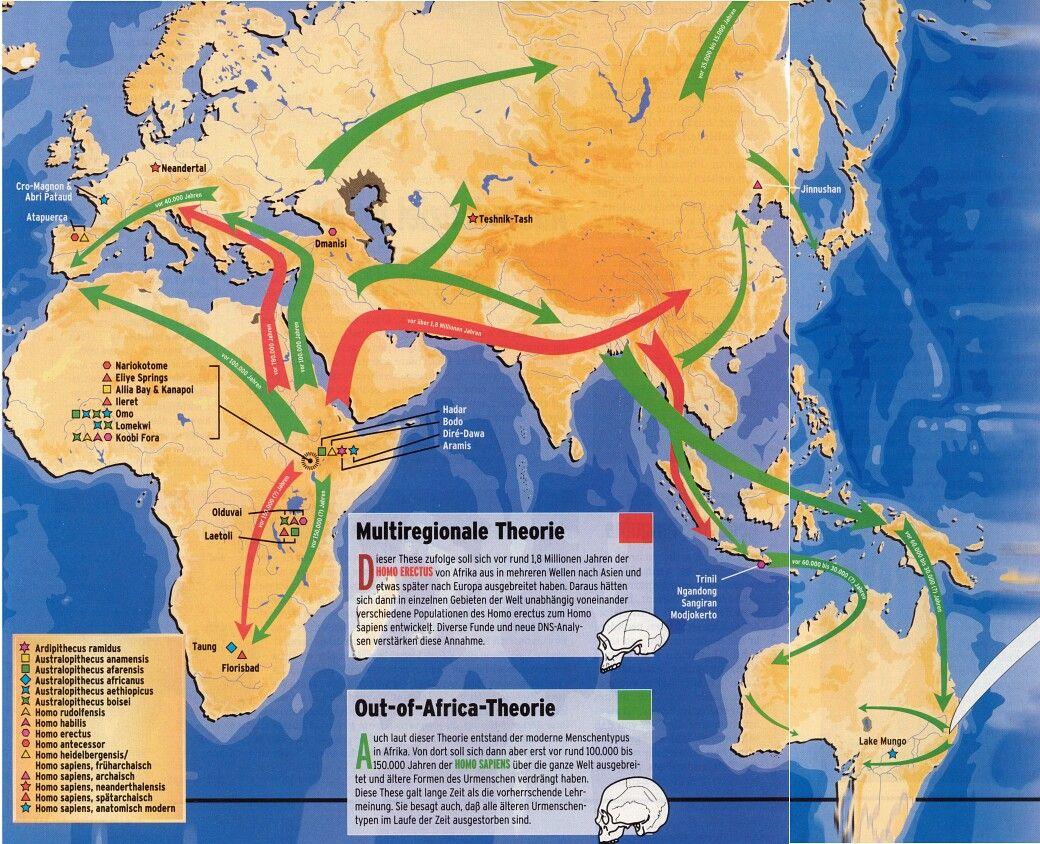 Multiregionale En Out Of Africa Theorie