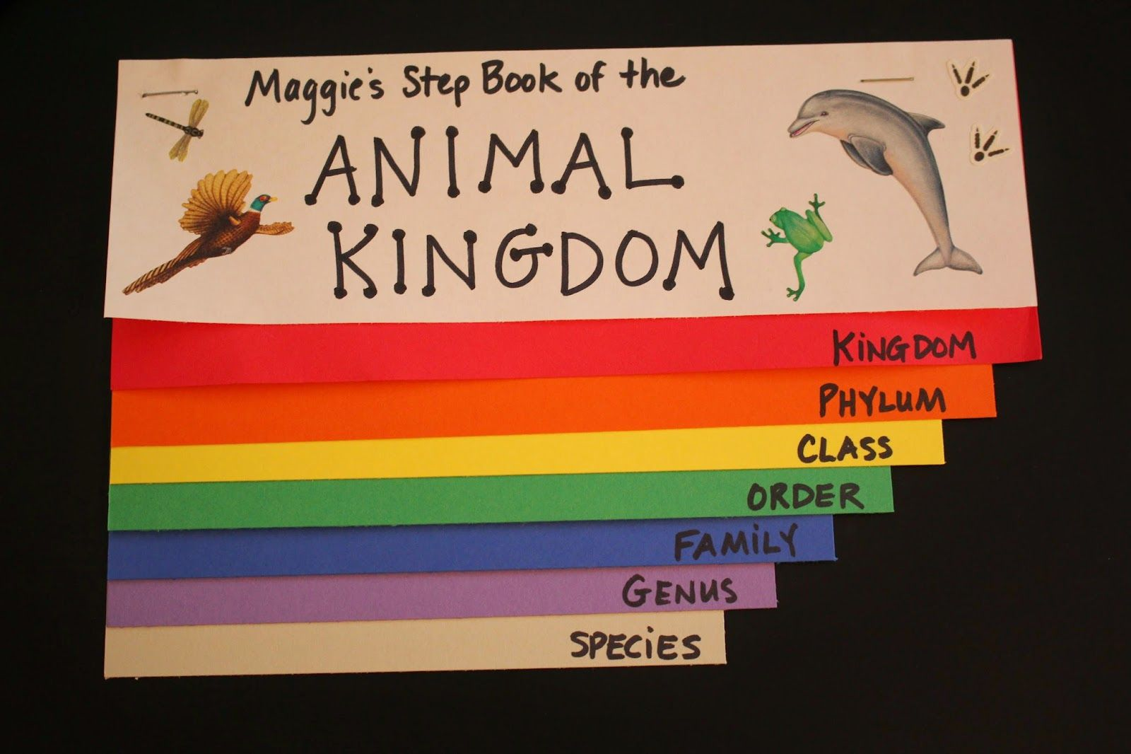 Spark And All Apologia Zoology 1