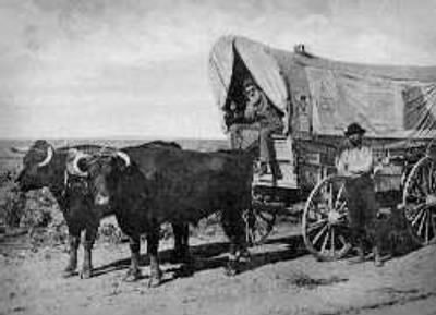 Traveling by covered wagon was no fun | Covered wagon ...