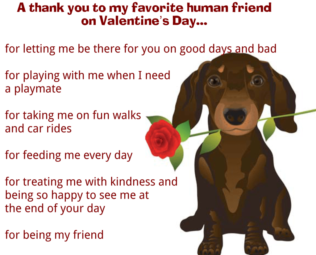 Valentine S Day Message From Dog
