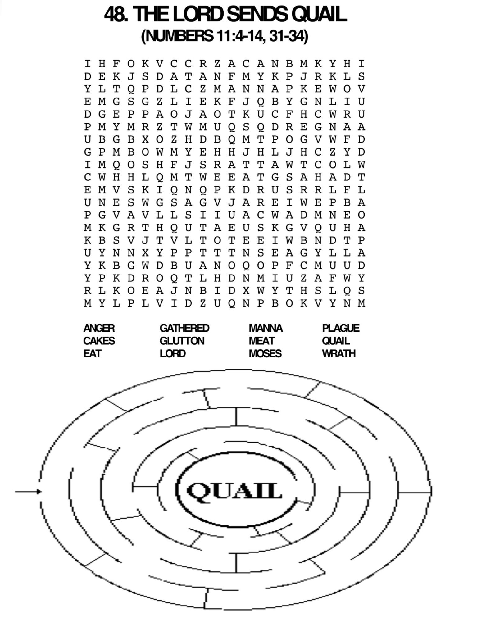 Quail Word Search And Maze Vbs