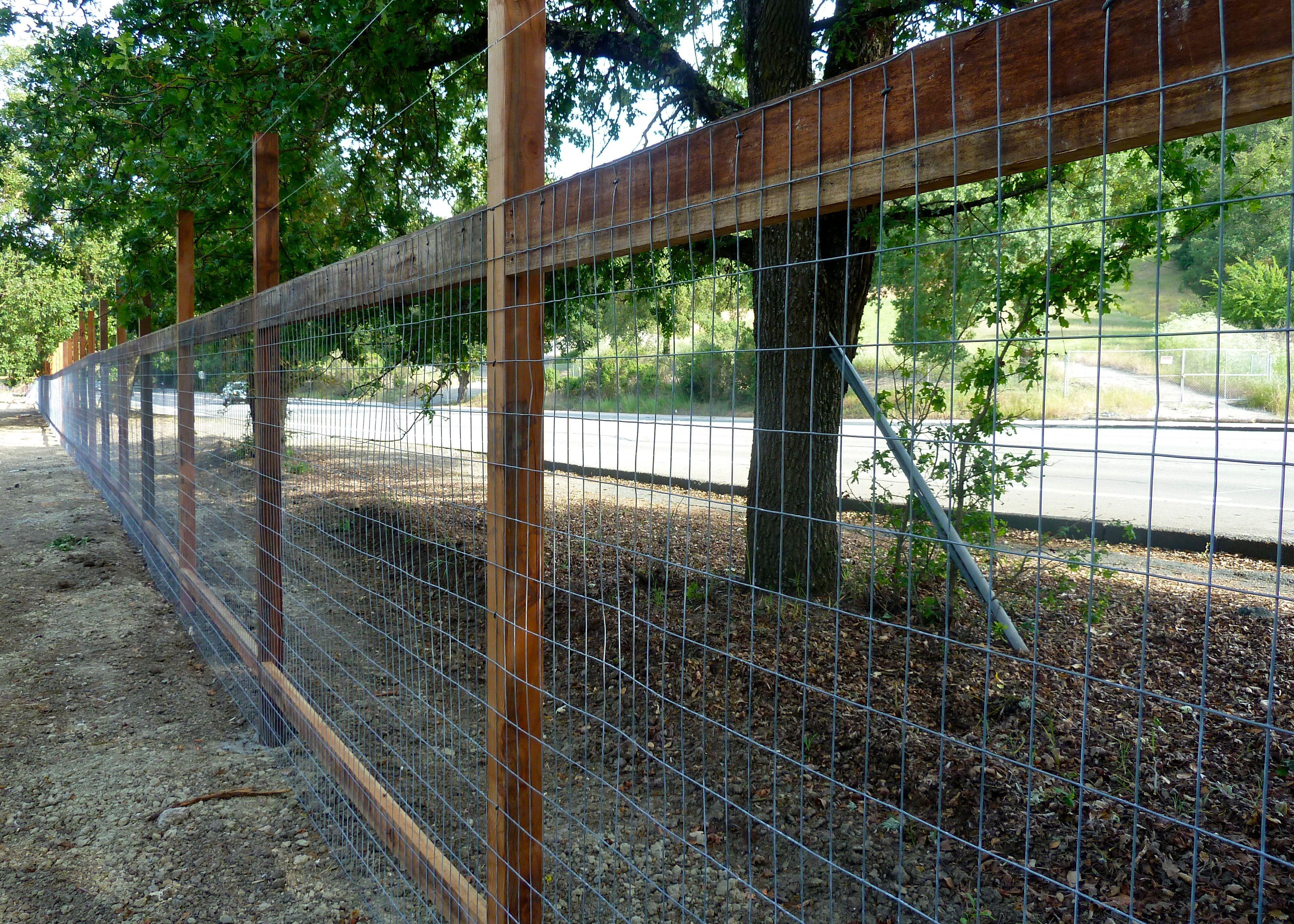 Deer Fencing For Gardens