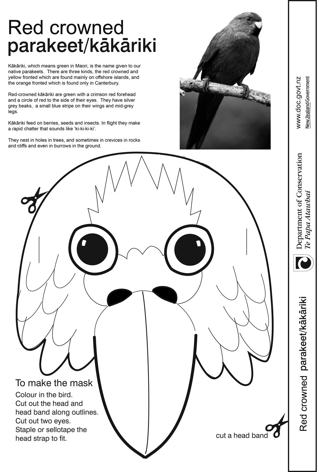 How To Make A Bird Mask Bird Mask Template