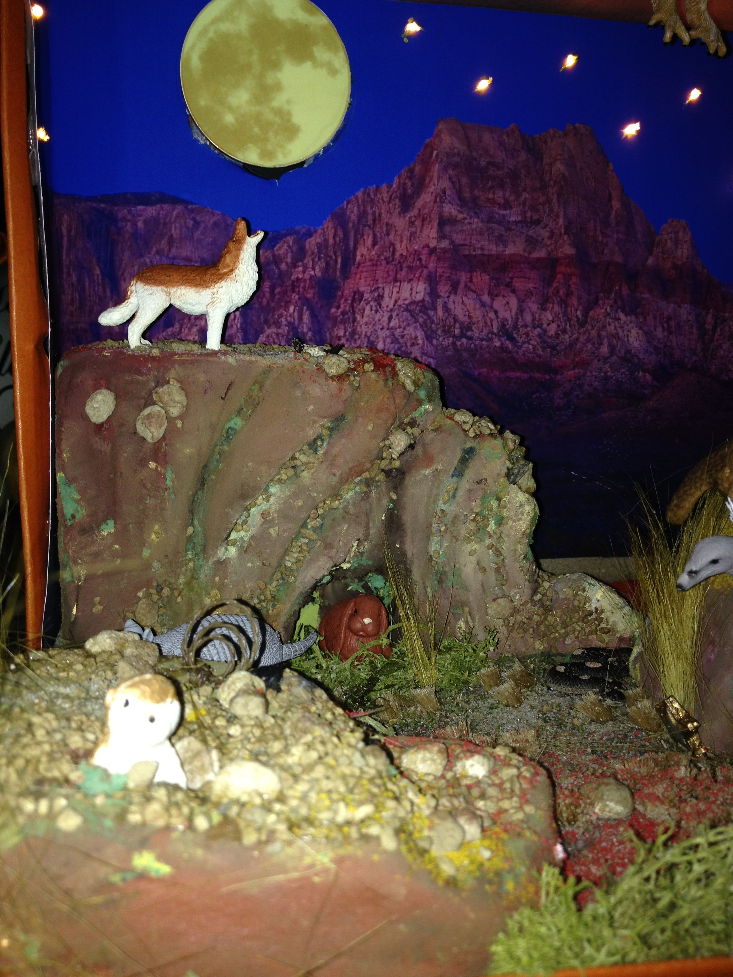 Shoebox Desert Diorama Wolf Howling At The Moon 3rd