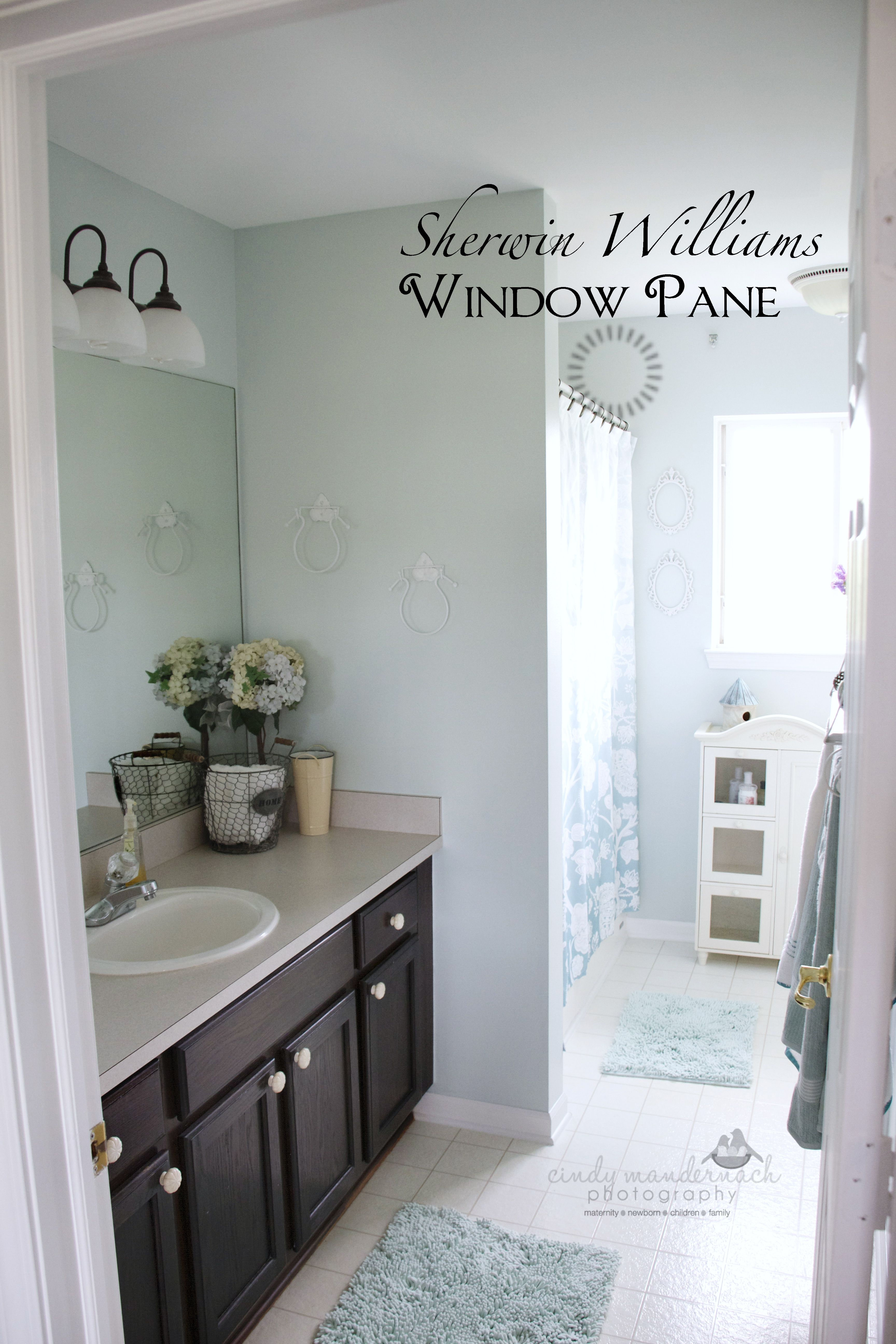 Sherwin Williams Windowpane Paint Color In My Master Bath