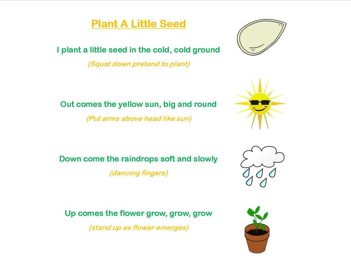 Planting Farm Preschool Worksheet