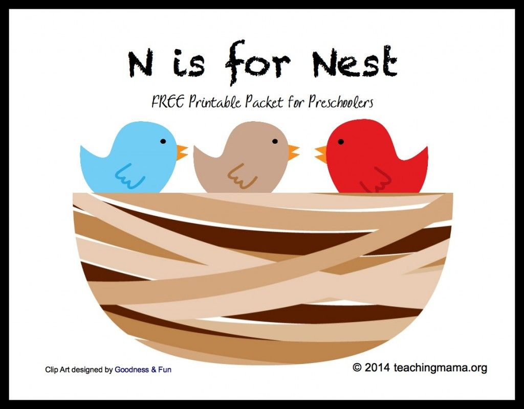 Preschool Theme Birds