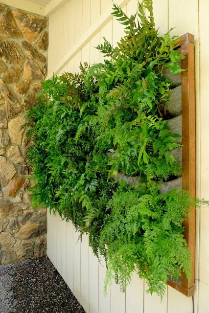 Fern Wall With Copper Frame Elements Vertical Garden