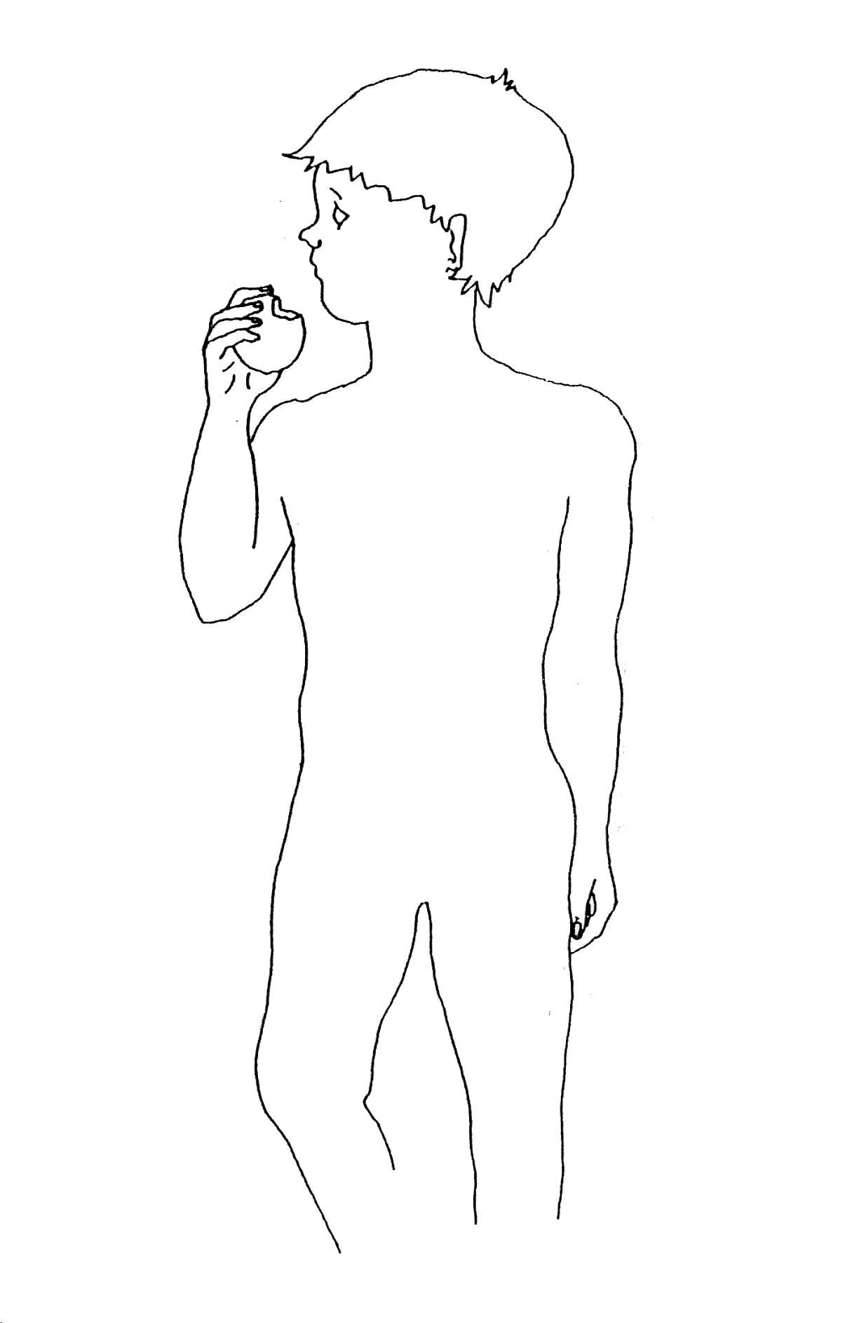 Sciences Ce2 Alimentation Et Digestion Cartable D Une