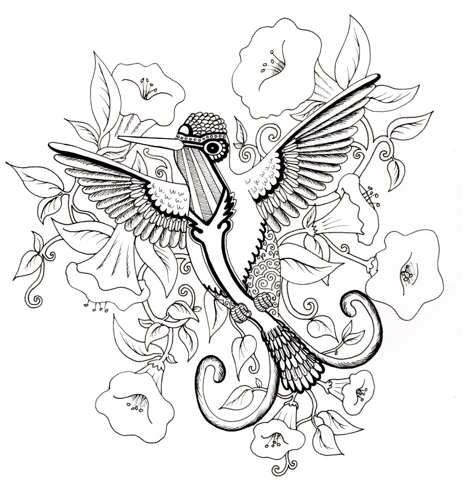 Hummingbird Design For Adult Colouring In I Am Working On Getting