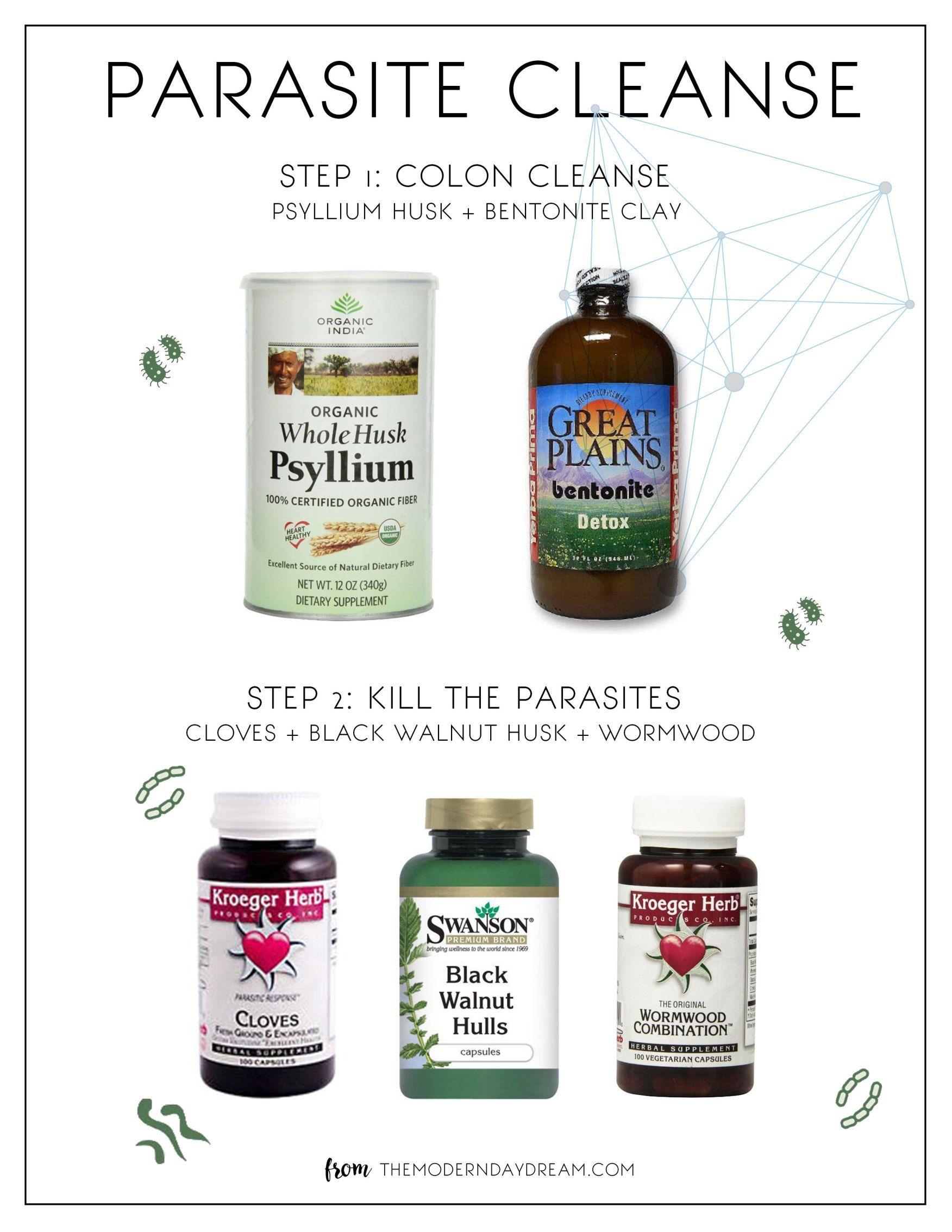 Parasite Colon Cleanse Recipes Blog Dandk