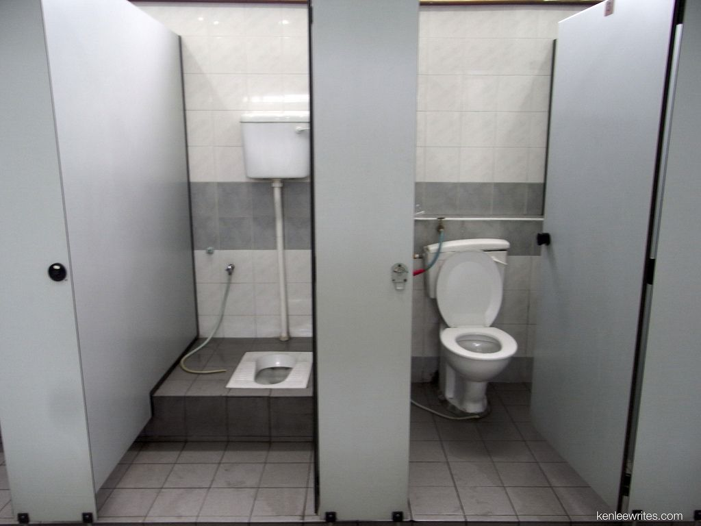 the different types of toilets you'll see around the world http