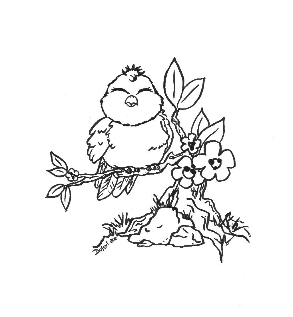 Image Detail For For Kids And Adults Printable Bird