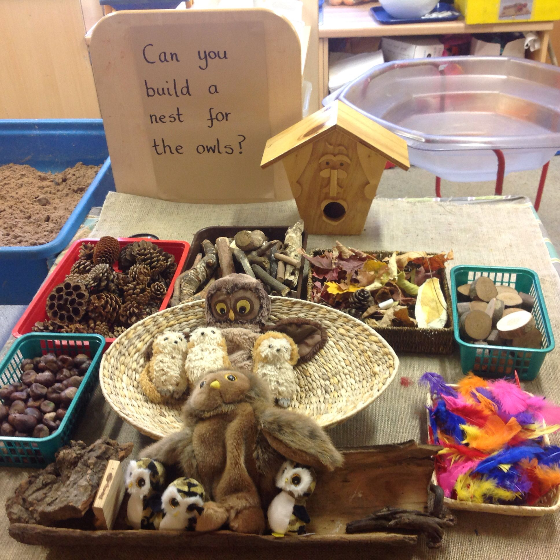 Owl Babies Loose Parts For Nest Building Imaginative Play