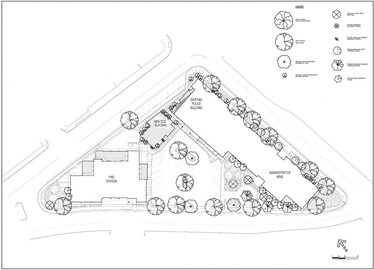 Landscape Architecture Plan Drawings