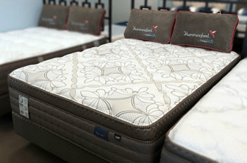 Mattress To Go Presents The Theic Hummingbird Silver Falls Pillowtop A Bed Featuring Affordable Luxury Combined With Ultra Plush Comfort