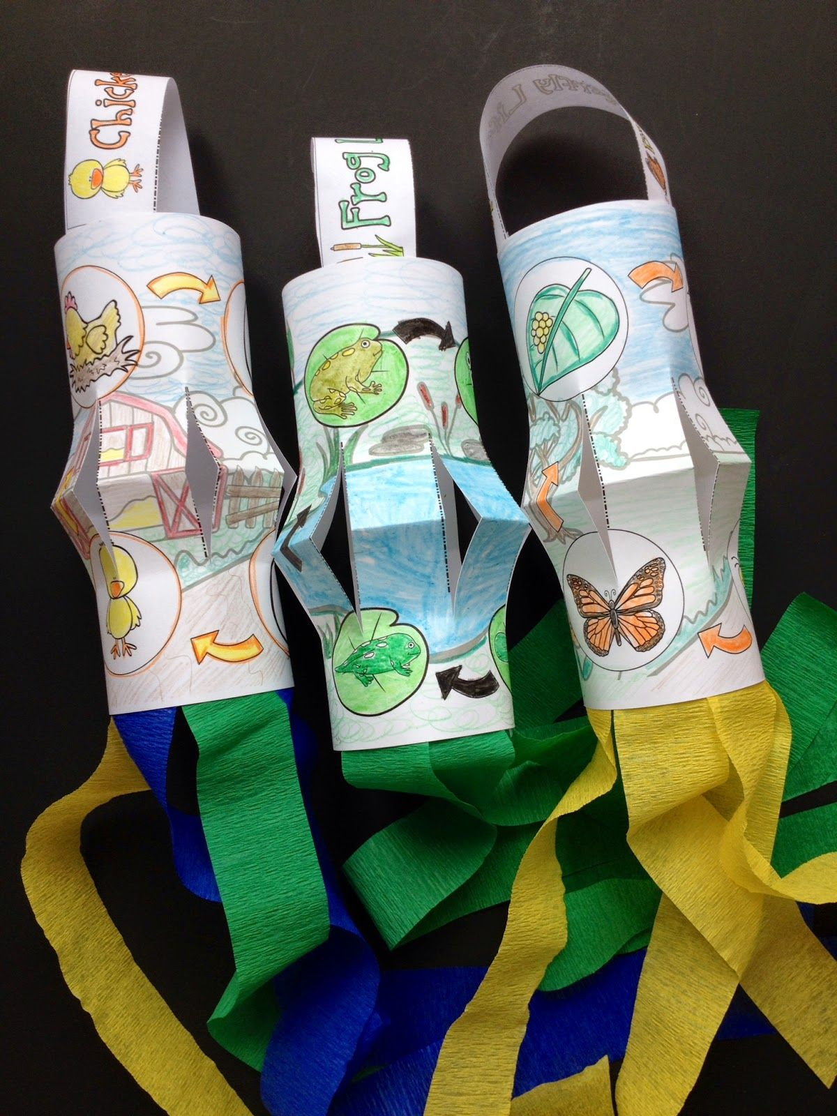 Life Cycle Windsocks For The Life Cycle Of A Butterfly Craft Frog Life Cycle Craft And