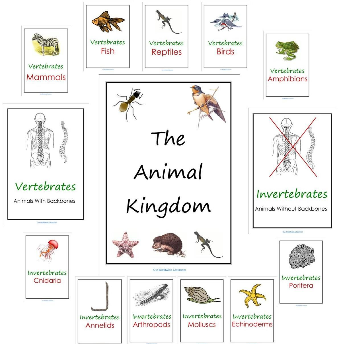 Our Worldwide Classroom Our Animal Kingdom Notebooks With Printable Materials