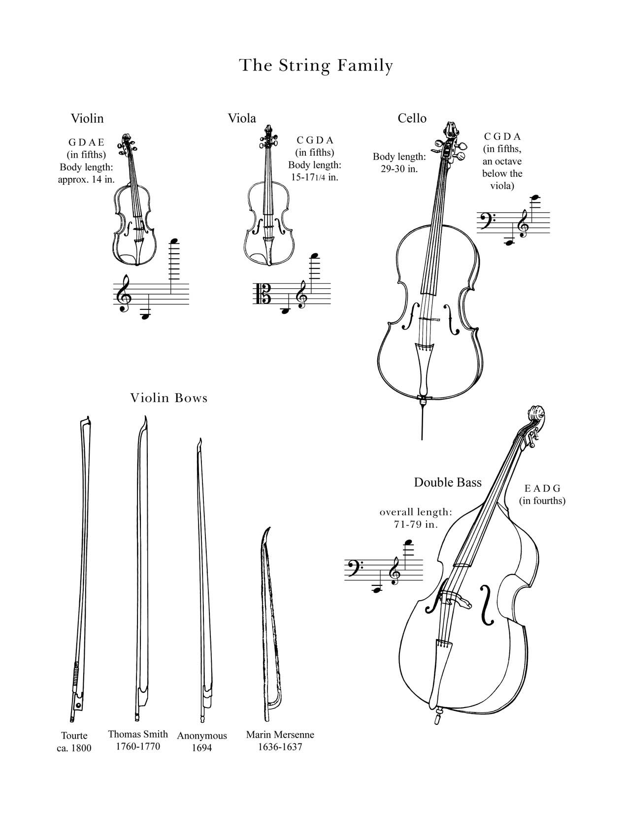The String Family Drawings Of Instruments In The