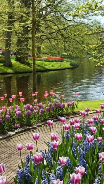 beautiful flower gardens pinterest Dont miss out on the most beautiful garden in Europe
