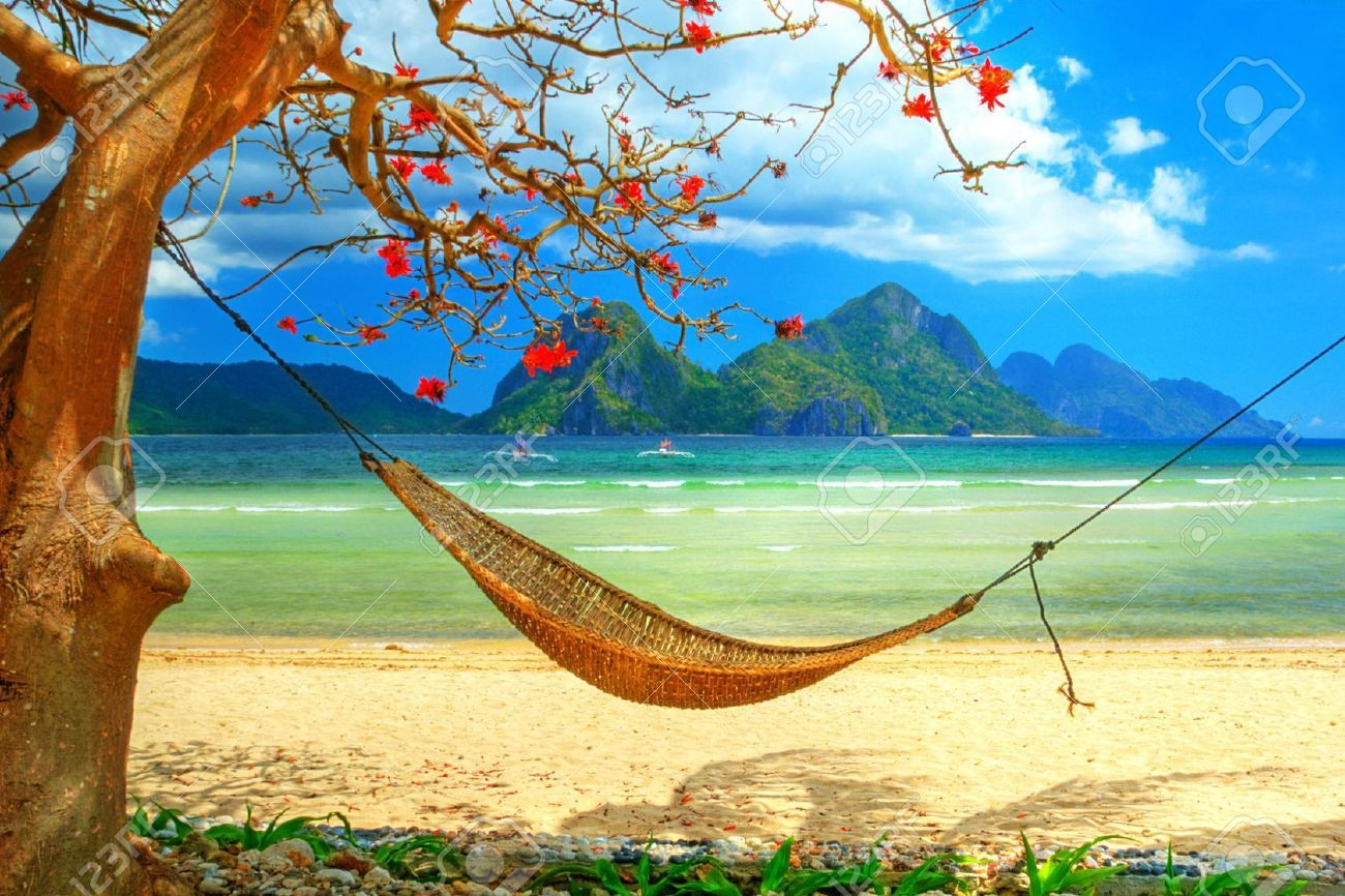 Tropical Beach Scene With Hammock Stock Photo Picture And