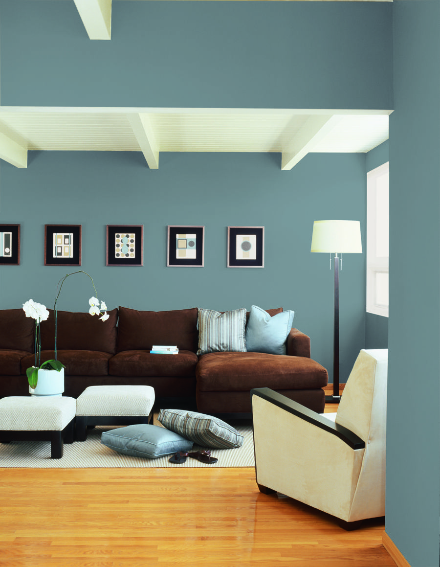 Wal To Wal Color Hous Modern House