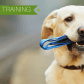 Dog obedience training dog health u infographic pinterest dog
