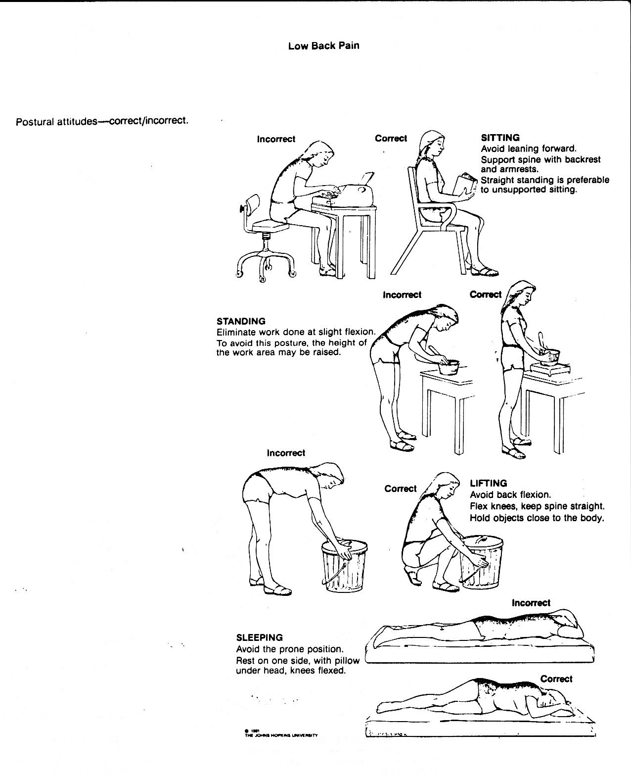 Lower Back Muscle Pain Exercises
