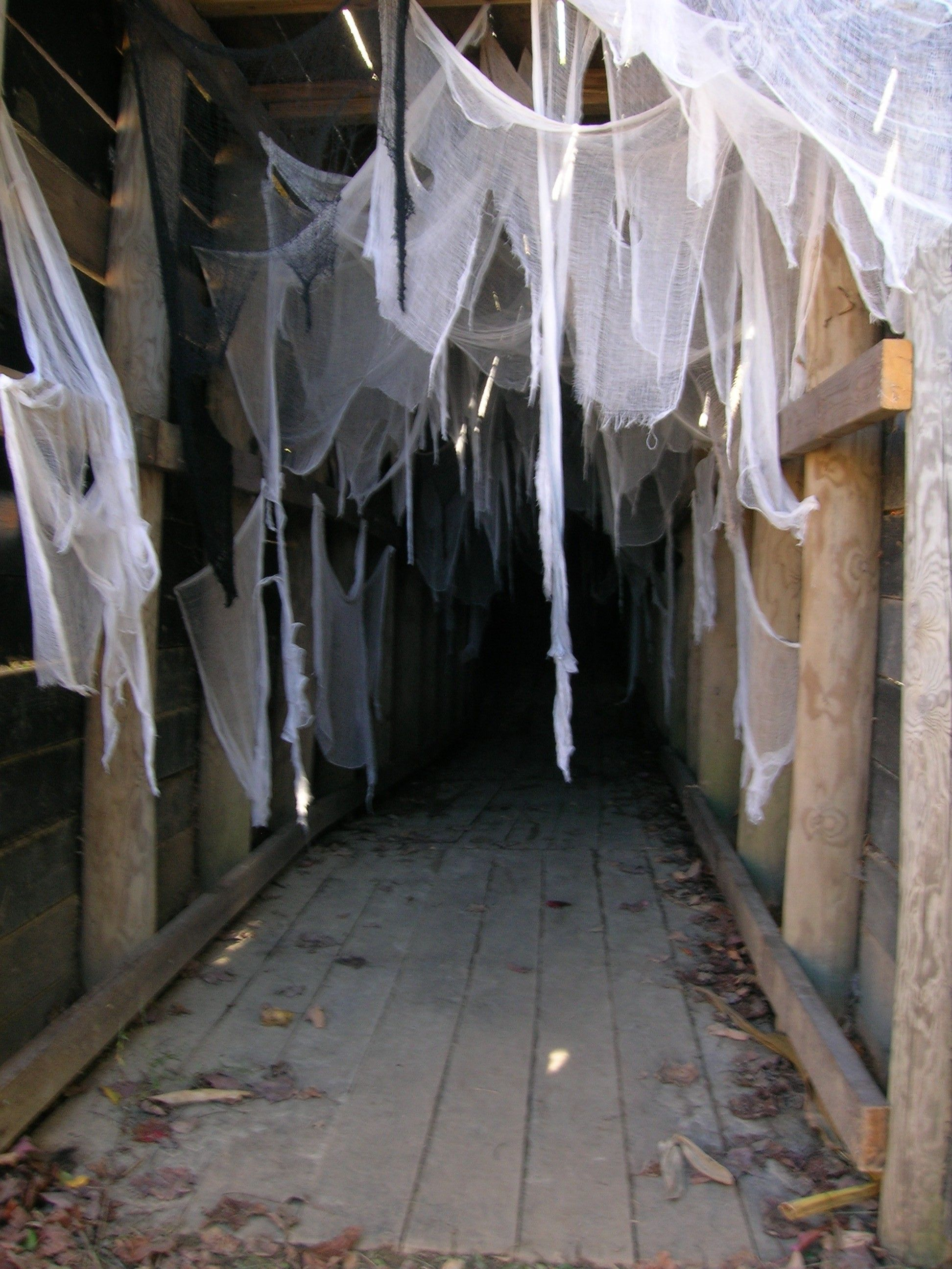 Spider Tunnel In The Harvest Haunt At Libertyridgefarmny Upstate Ny What S At The
