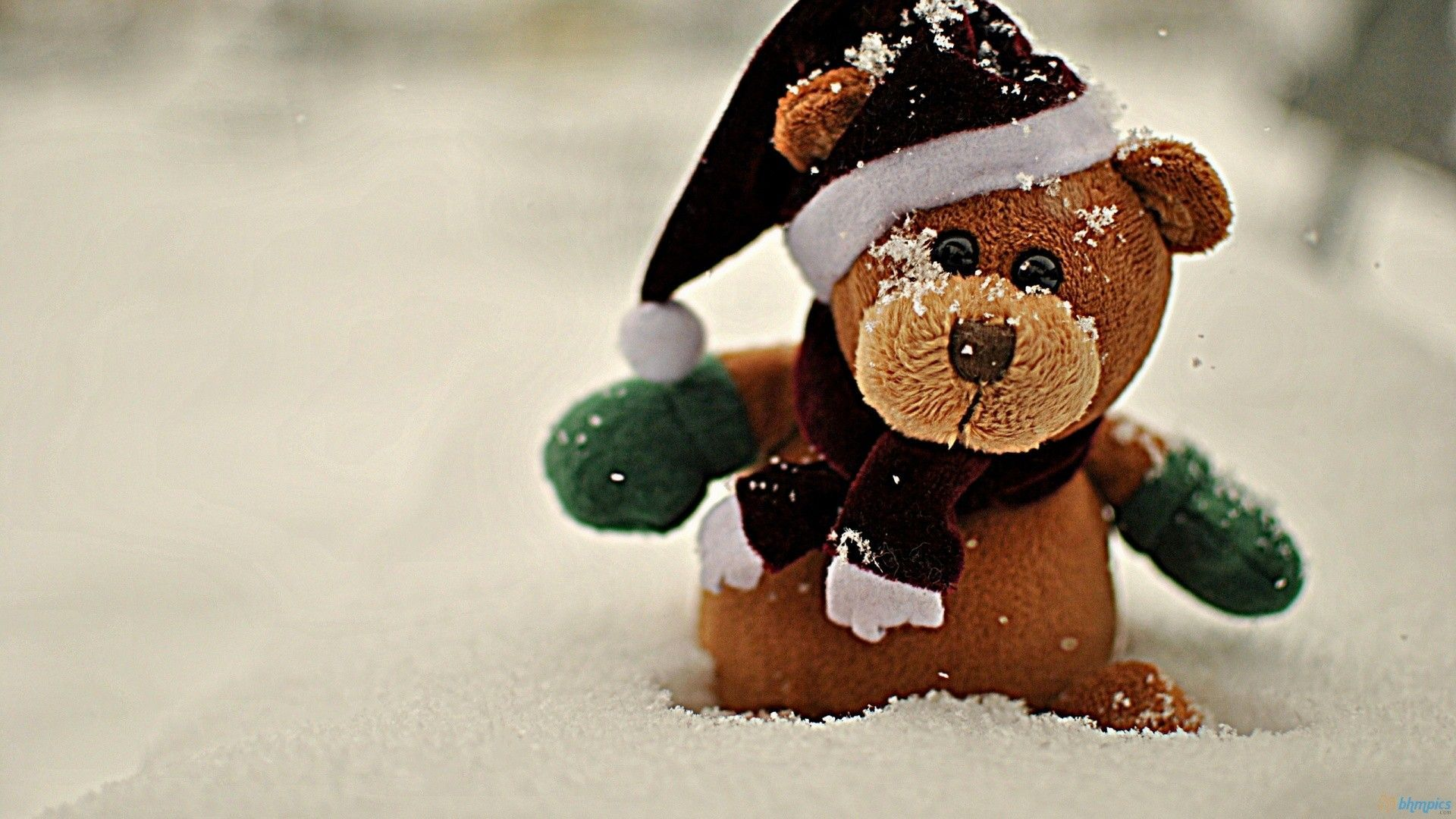 teddy bears wallpapers hd android apps on google play 1024×768