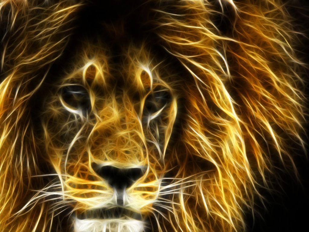 d cool lion wallpaper d wallpapers all types pinterest   hd