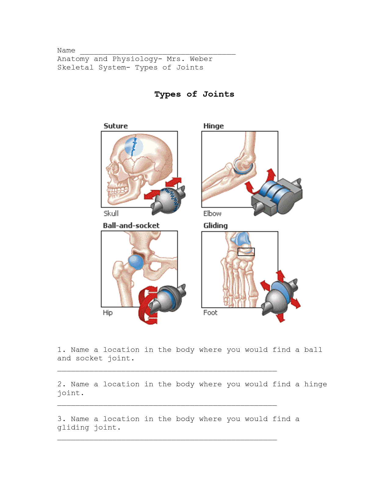 Joints Worksheets