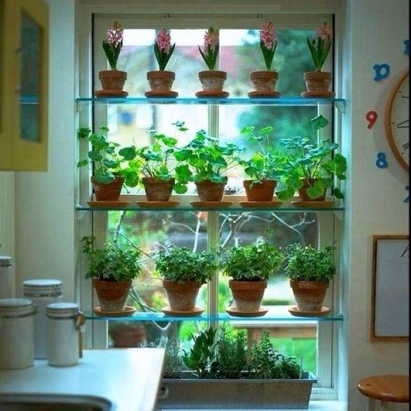indoor herb garden Best 25+ Window herb gardens ideas on Pinterest   Growing