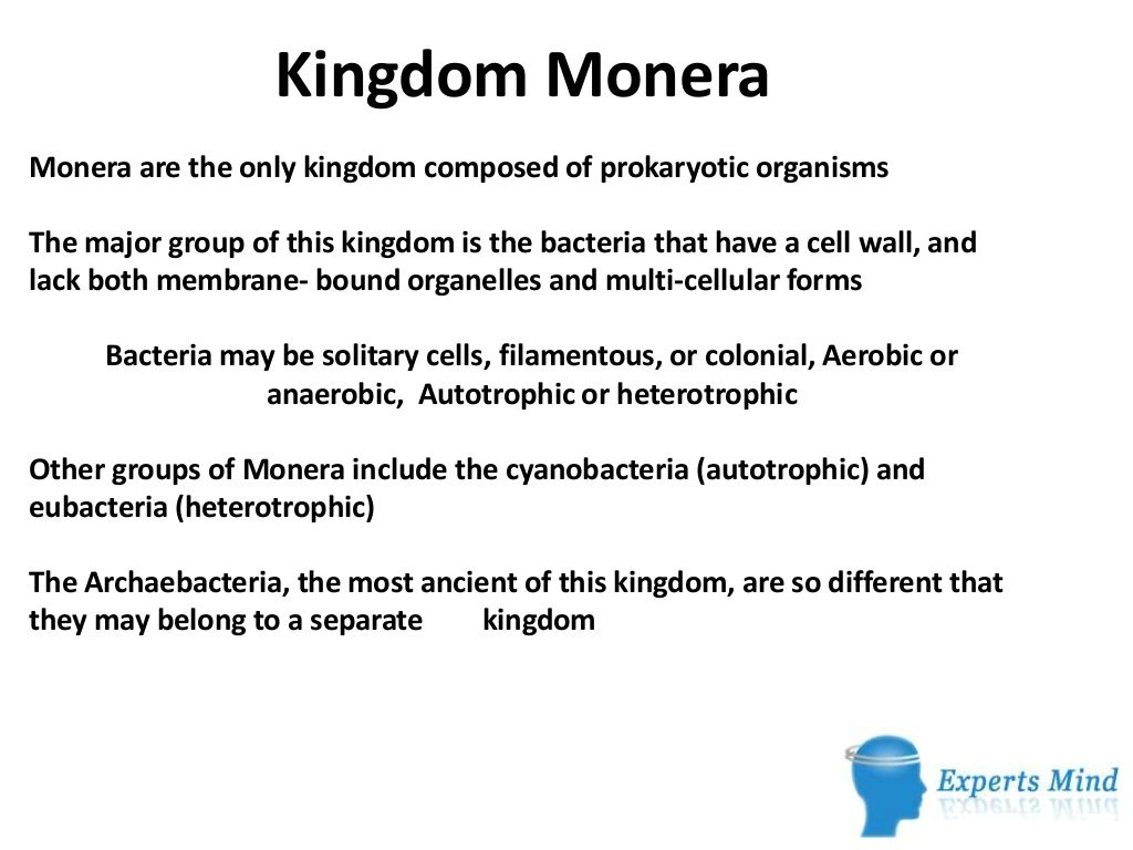 Kingdom Monera By Expertsmind It Education Pvt