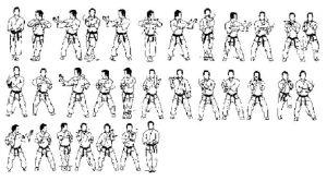 Shorin Ryu Kata Diagrams | Postado por Pérside Pinheiro às