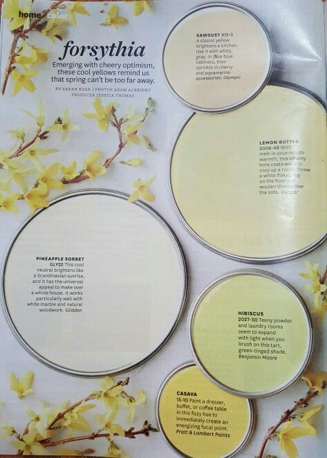 Forsythia Better Homes And Gardens Jan 2017 Paint Palettescolour