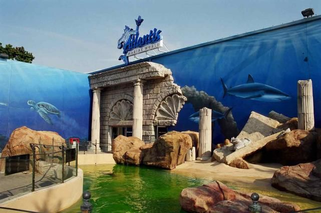 Long Island Aquarium Penguin Encounter Review