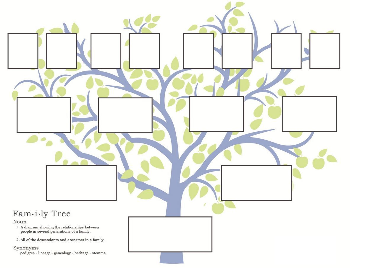 Stepfamily Family Tree Template Step Parent Relationships