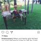 Wedding decorations wood november 2018 Pin by Selena Clissold on Wedding  Pinterest  Wedding