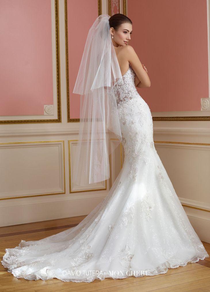 Strapless Sheer Lace Bodice Fit u Flare Wedding Dress  Vada