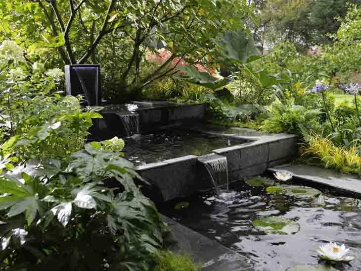 Bassin De Jardin Preforme Leroy Merlin