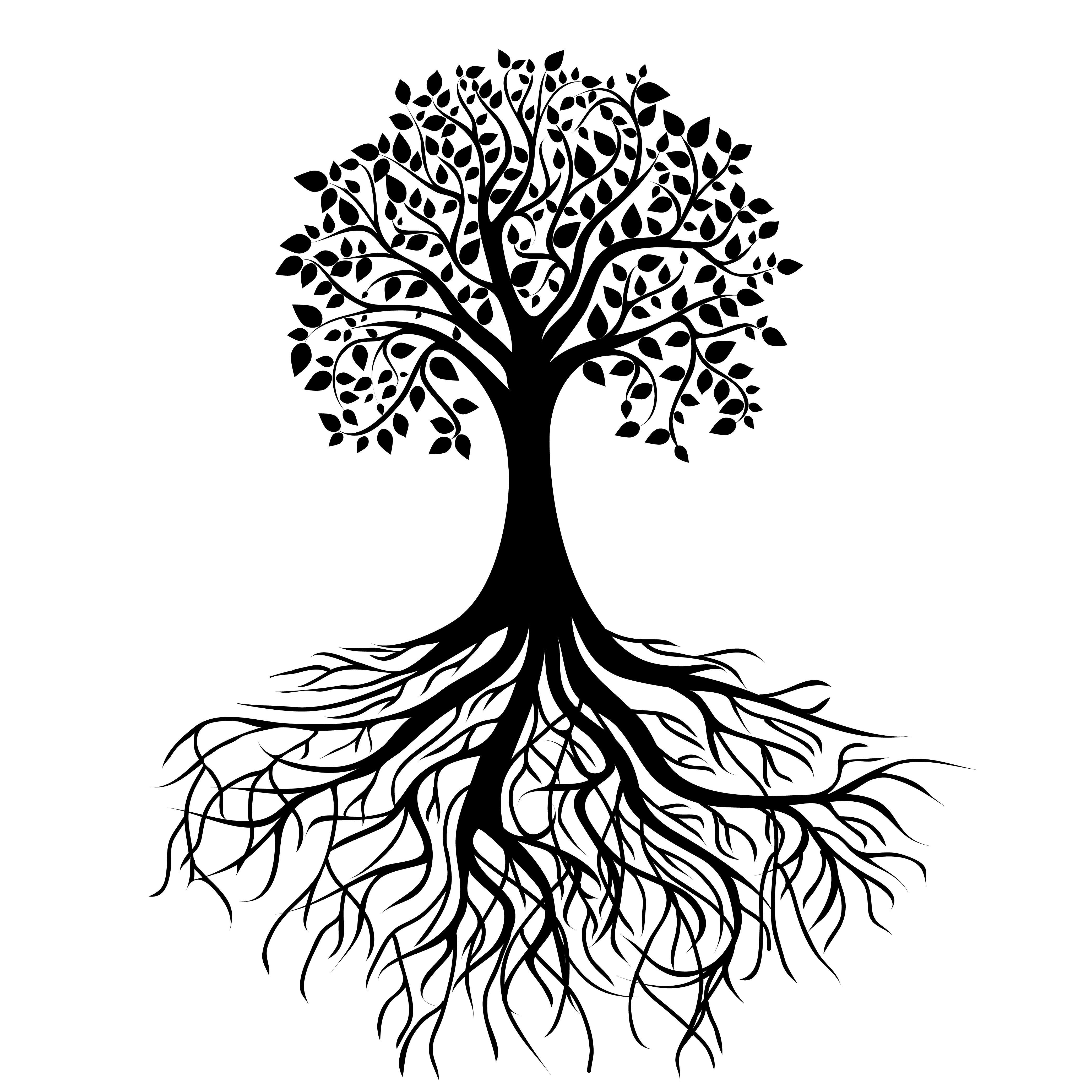 S Search Q Tree Roots Tattoo