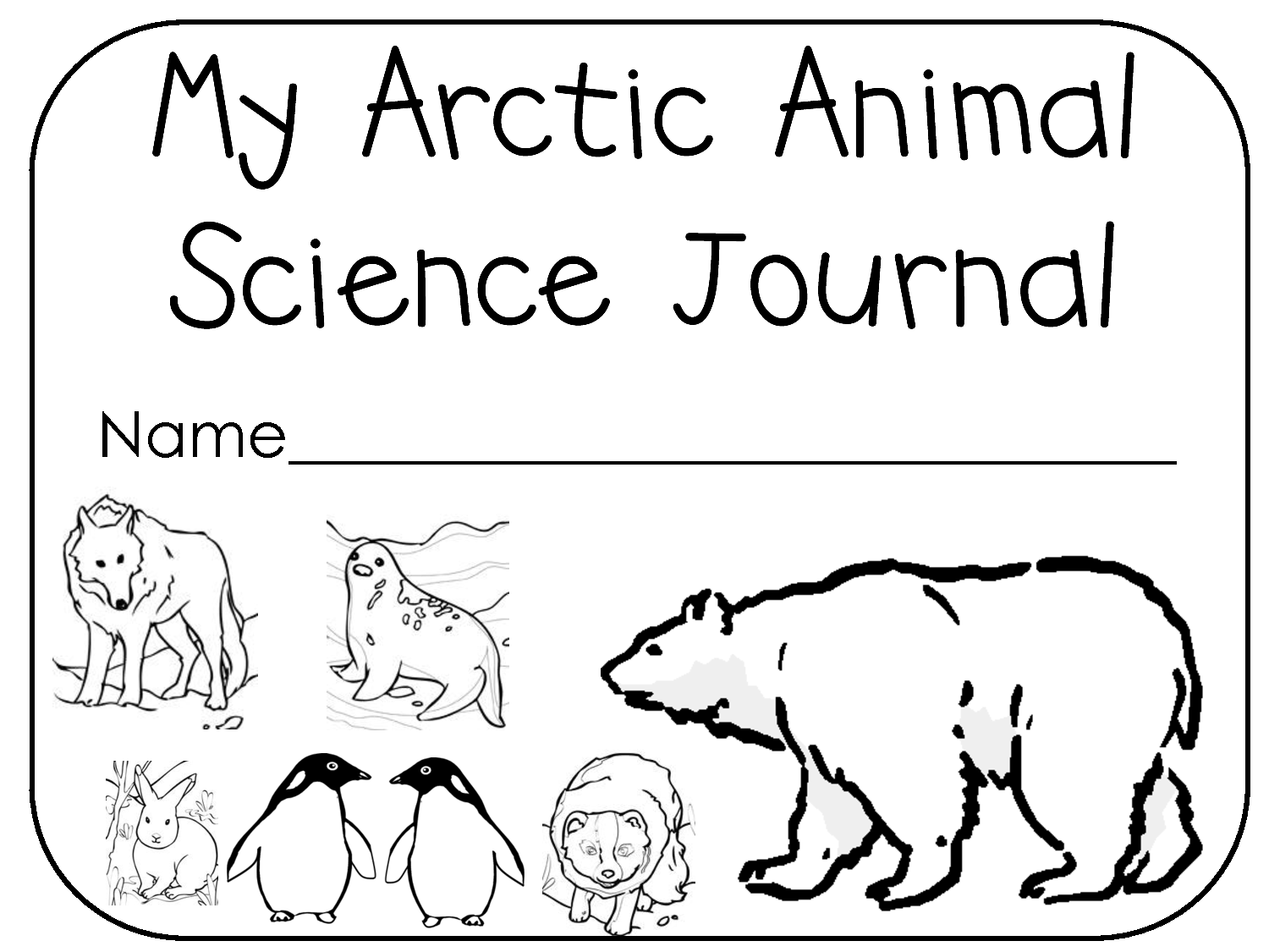 Arctic Biome Worksheet