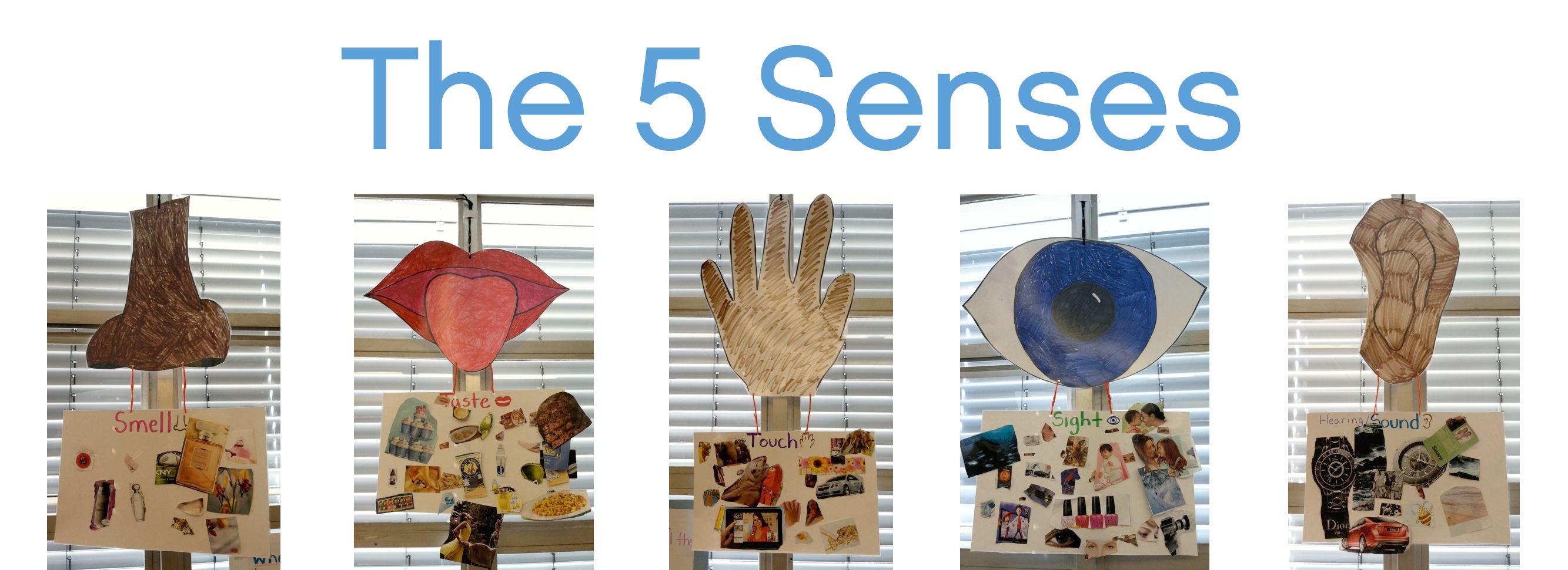 Kindergarten And The Five Senses