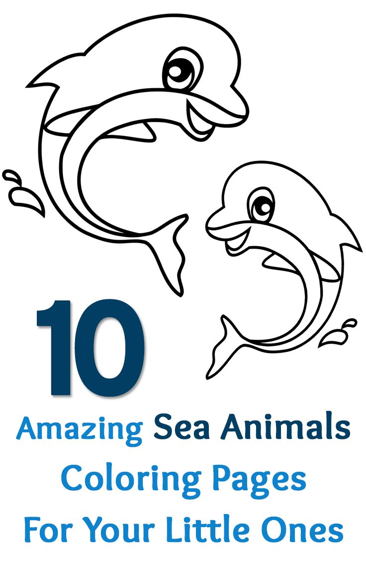 Top 15 Free Printable Sea Animals Coloring Pages Online Crayons